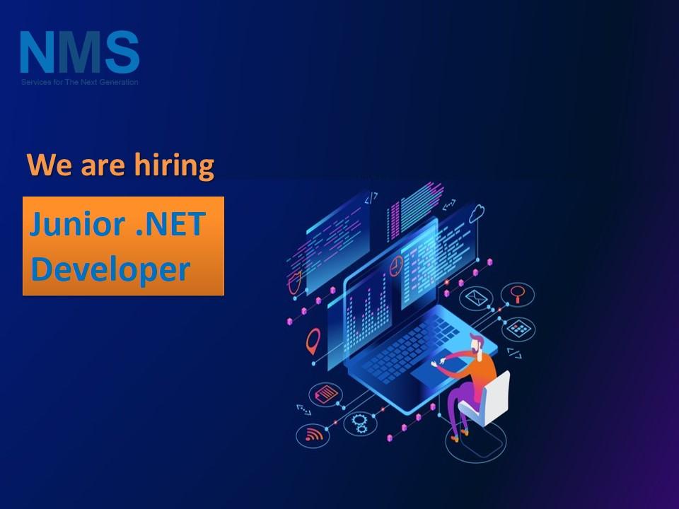 Junior .NET Developer